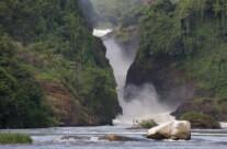 Nile falls