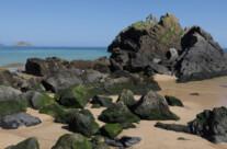 Felsen an der baskischen Küste