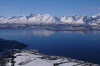 Nordmannvik