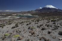 Volcánes Parinacota y Pomerape
