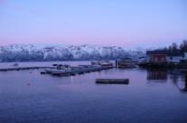 Fjordhafen in Pink