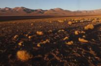 rote Wüste